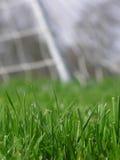 Herbe verte avec le réseau du football Photo stock