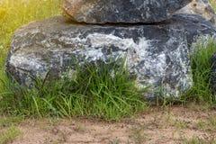 Herbe verte croissante avec le grand granit Photos libres de droits