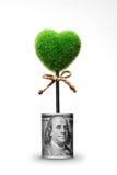 Herbe verte dans la forme de coeur dans le pot de billet d'un dollar Photographie stock