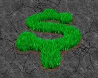 Herbe verte dans la forme de symbole dollar sur le fond de sol photo libre de droits