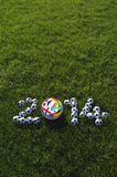 Herbe verte de ballons de football d'équipes du football 2014 Photos stock