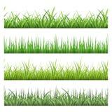 Herbe verte de champ Modèles sans couture de vecteur horizontal réglés Photos libres de droits