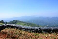 Herbe verte de montagnes d'été Image stock