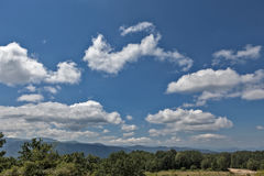 Herbe verte de montagnes d'été et ciel bleu avec des nuages Images stock