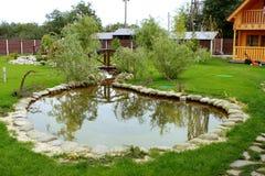 Herbe verte de pelouse de yard et piscine ornementale images stock
