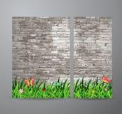 Herbe verte de vecteur au-dessus de fond de mur de briques Photos libres de droits