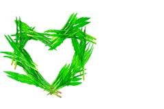 Herbe verte en forme de coeur sur le fond blanc Photos libres de droits