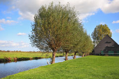 Herbe verte et rivière Photographie stock