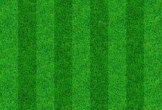 herbe verte fraîche Photo stock