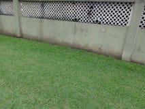 Herbe verte par un vieux mur de barrière photographie stock libre de droits
