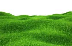Herbe verte s'élevant sur des collines avec le fond blanc Photographie stock libre de droits