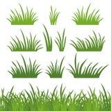 Herbe verte, sans couture et réglé Photo stock