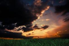 Herbe verte sous le ciel bleu-foncé et orange Images stock
