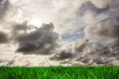 Herbe verte sous le ciel gris Photos stock