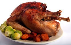 Herbed roast turkey Royalty Free Stock Photo