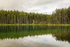 Herbert jeziora z odbiciem, drewna Banff park narodowy, Alberta, Kanada Obrazy Royalty Free