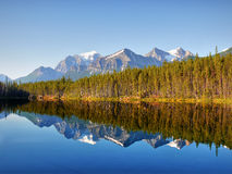 Herbert Lake, Banff Np, Alberta, Canada Stock Afbeelding