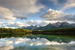 Herbert Lake panorama Royalty Free Stock Images