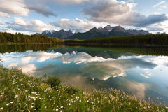 Herbert Lake panorama Royalty Free Stock Images