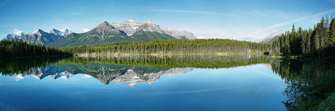 Herbert lake panorama Royalty Free Stock Photos