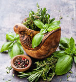 Herbes épicées fraîches en mortier images stock