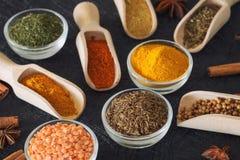 Herbes, épices et additifs sur un fond foncé images libres de droits