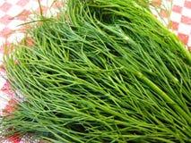Herbes Stock Image