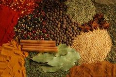 Herbes photo stock