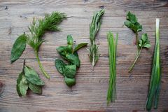 herbes Photographie stock