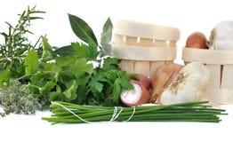 Herbes and aromatics Stock Image