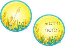 Herbes chaudes Photos libres de droits