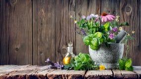 Herbes curatives et huile essentielle dans la bouteille avec le mortier Image libre de droits