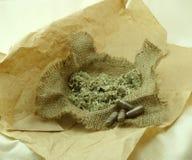 Herbes curatives et suppléments de fines herbes Photo stock