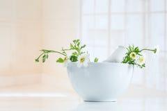 Herbes curatives, mortier et pilon de phytothérapie photographie stock