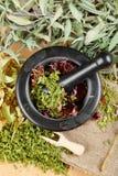 Herbes curatives sur la table, le mortier et le pilon en bois photos stock
