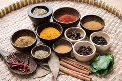 Herbes d'Asiatique de mélange Photo stock