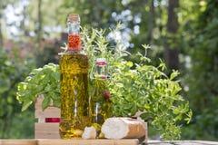 Herbes dans des bouteilles d'huile d'olive images libres de droits
