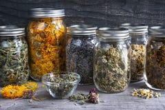 Herbes dans des pots Image libre de droits