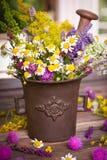 Herbes dans le mortier photographie stock libre de droits