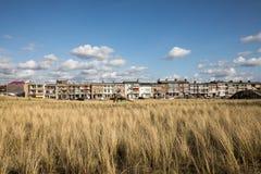 Herbes dans une dune de sable sous un ciel bleu clair chez Katwijk Zee aan, Hollande Photographie stock