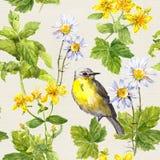 Herbes de jardin, fleurs, herbe, oiseau Modèle de répétition floral watercolor Images libres de droits