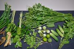 Herbes de légumes frais Photo stock