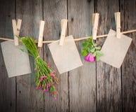 Herbes de médecine et attache de papier à rope Photos stock
