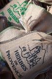 Herbes de provence Foto de Stock Royalty Free