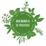 Herbes de Provence mieszkania sylwetki Fotografia Royalty Free