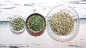 Herbes de thé Images libres de droits