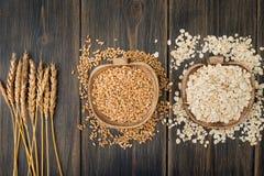 Herbes de transitoire d'avoine ou épillets, céréales et farine d'avoine la Floride d'étamine d'avoine photographie stock libre de droits
