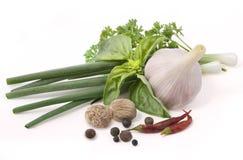 Herbes et épices. photographie stock libre de droits