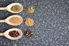 Herbes et épices Photographie stock libre de droits