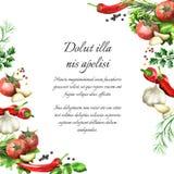 Herbes et épices Fond d'aquarelle illustration de vecteur